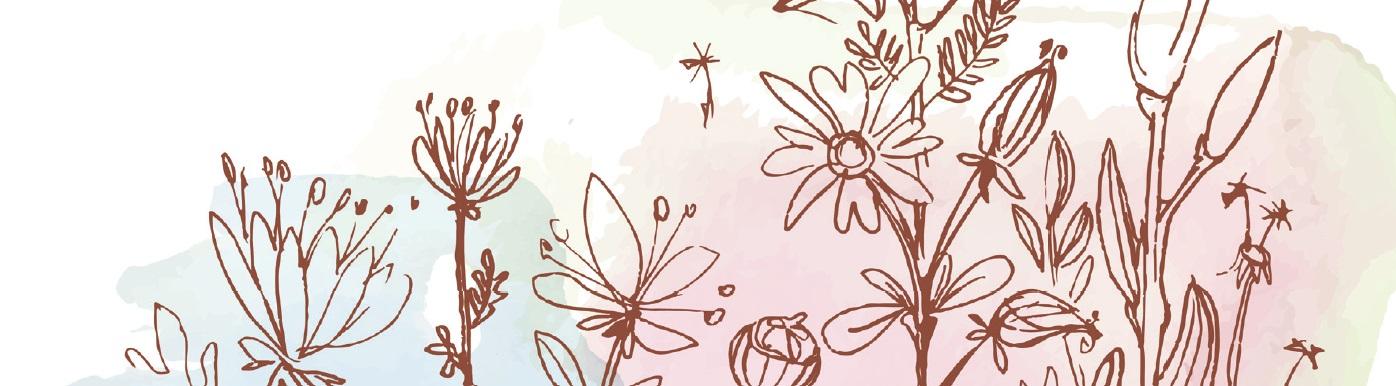 Illustrationen von Blumen